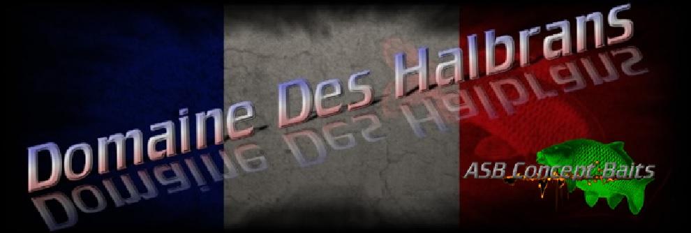 logo halbrans asb